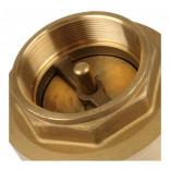 Клапан обратный пружинный Д32  NEW (лат. сердечн), S2095677, 540 руб., S2095677, , Клапаны